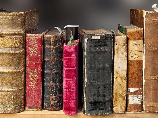 В Саранске оптимизируют библиотеки