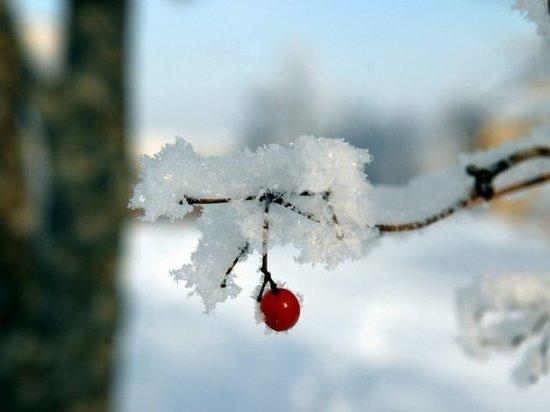 В Мордовии 13 марта осадков не ожидается, но будет морозно – до минус 20 градусов